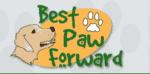 Best Paw Forward